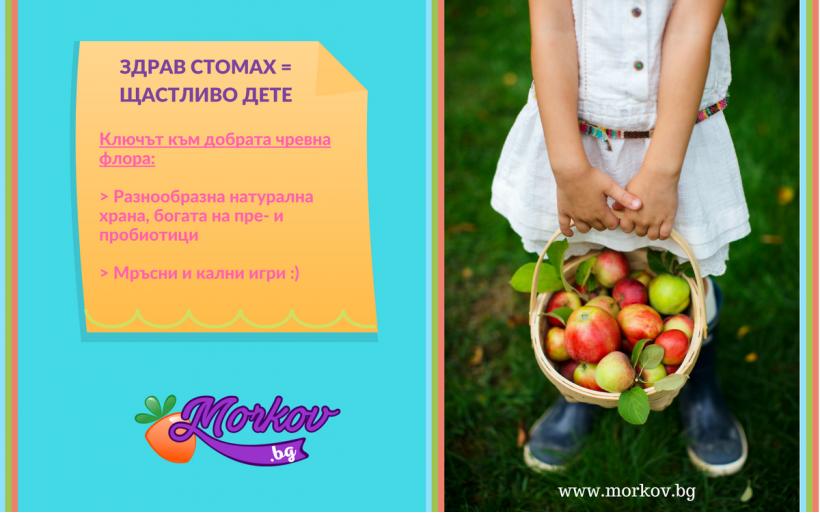 Здрав стомах и добра чревна флора за Щастливо дете
